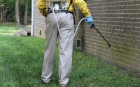 The Importance Of Environmental Pest Control Solutions