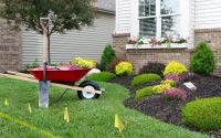 How to Maintain And Take Care of Your Garden